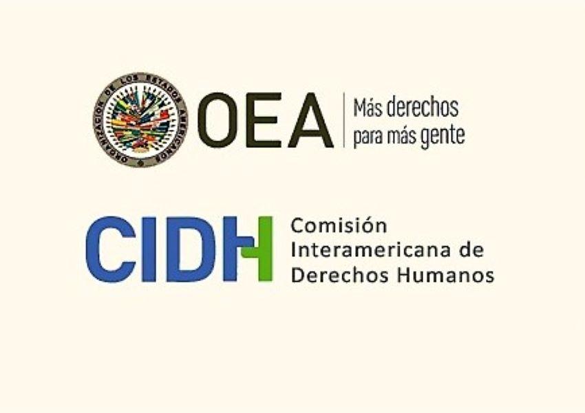 Preocupación por la interferencia de la OEA en la CIDH